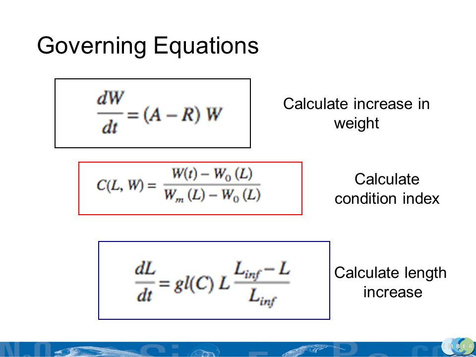 Governing Equations Calculate increase in weight
