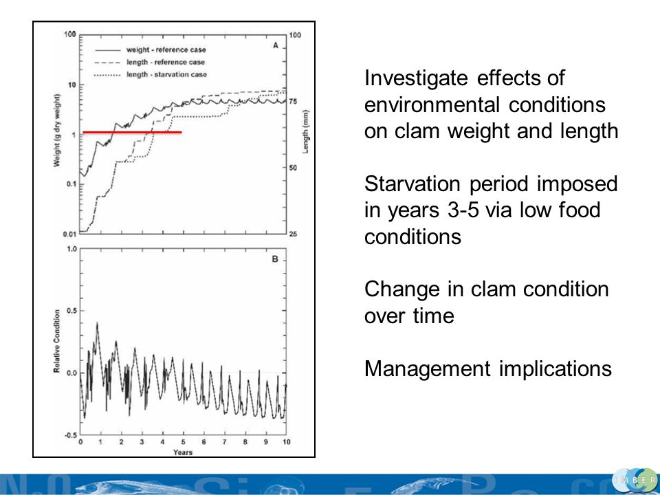 Investigate effects of environmental conditions on clam weight and length