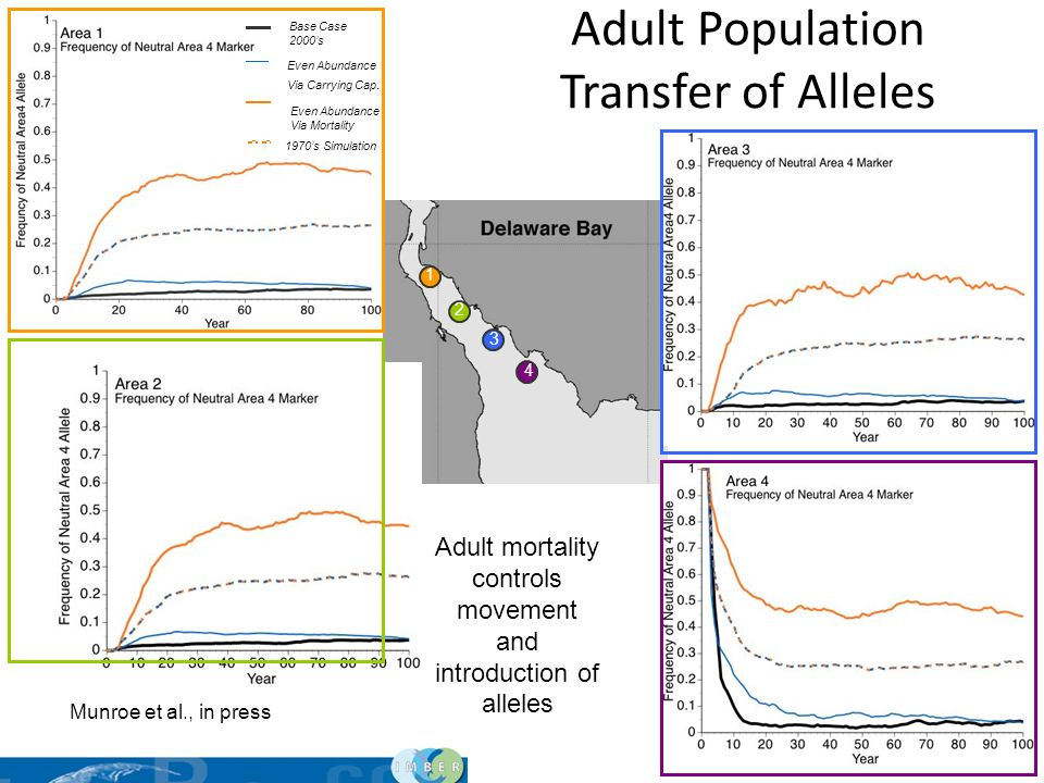Adult Population Transfer of Alleles