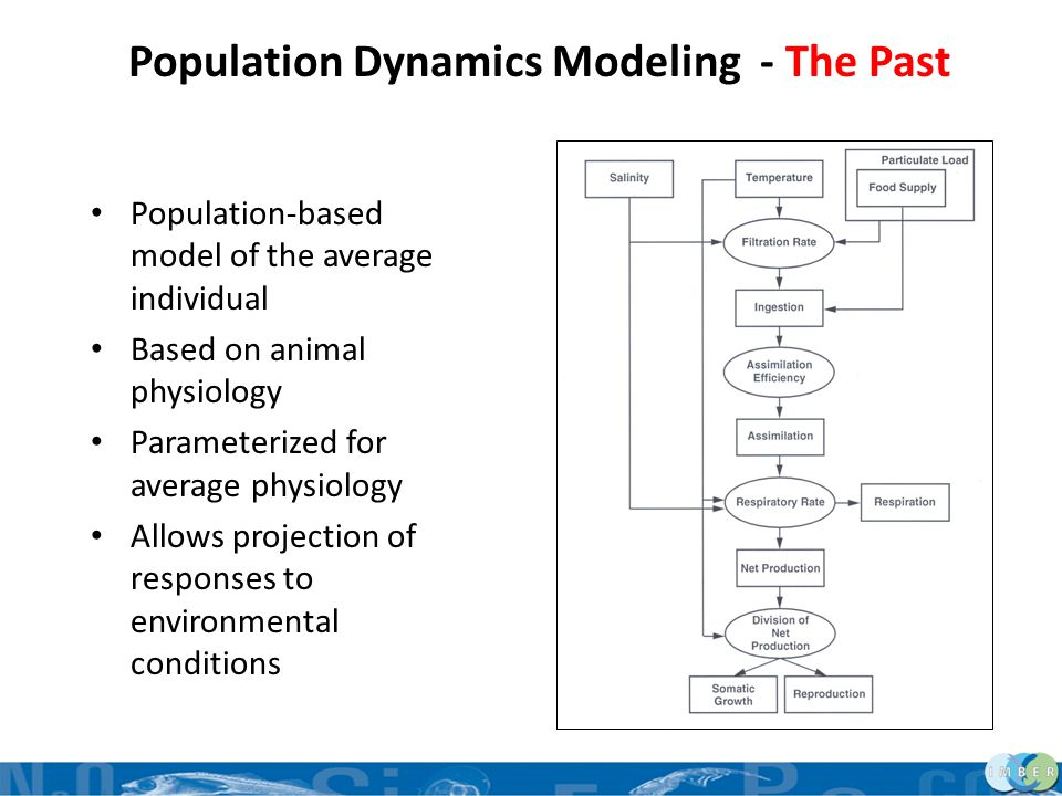 Population Dynamics Modeling - The Past