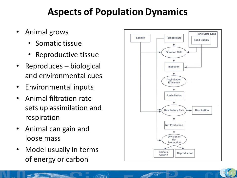 Aspects of Population Dynamics