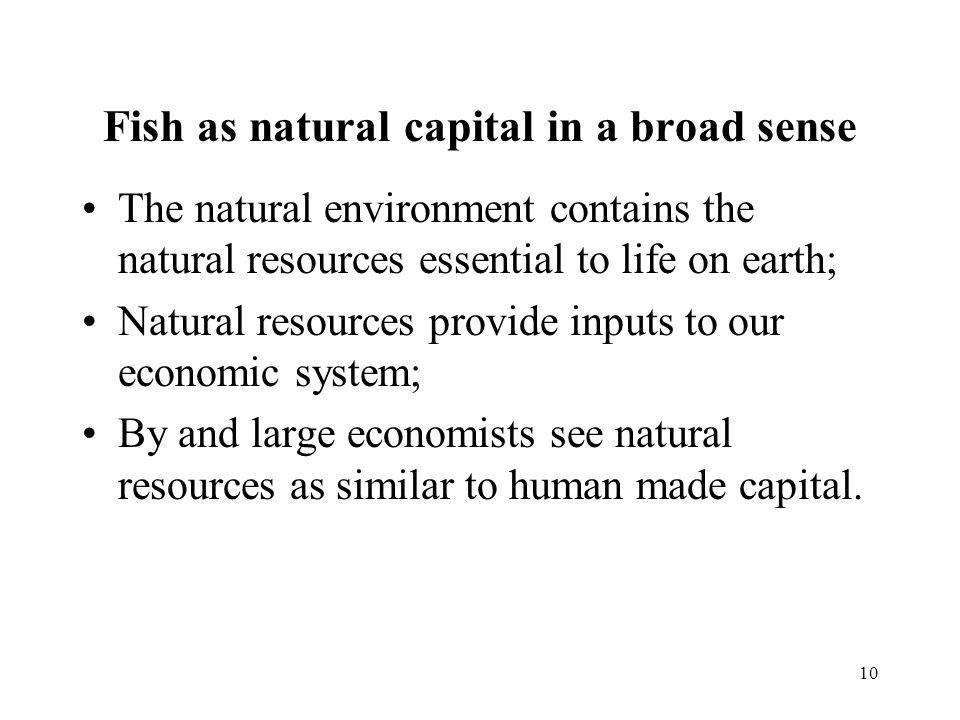 Fish as natural capital in a broad sense