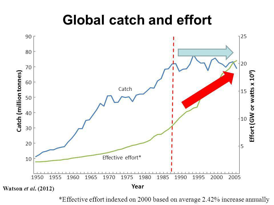 Global catch and effort