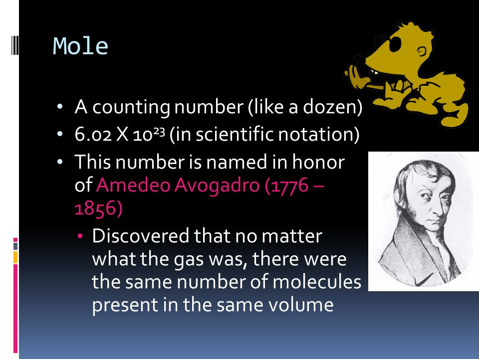 Mole A counting number (like a dozen)