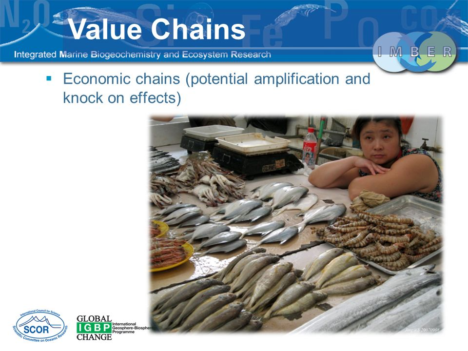 Value Chains Economic chains (potential amplification and knock on effects)