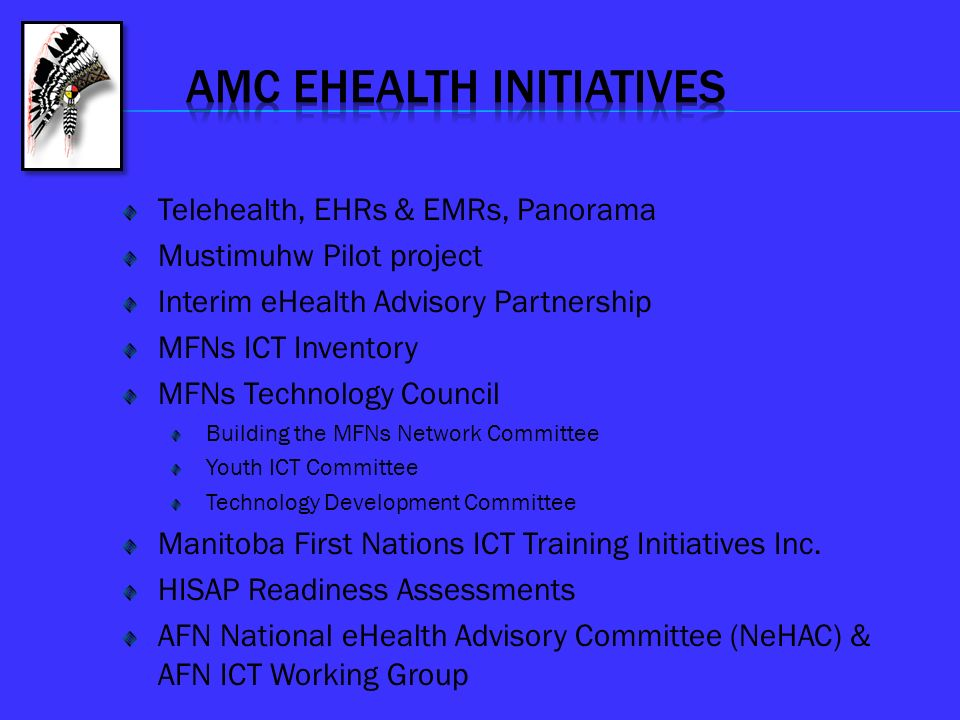 Amc EHEALTH INITIATIVES