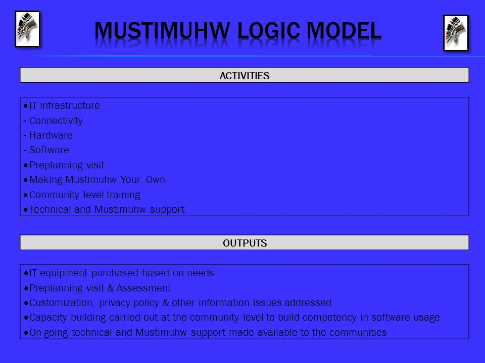 MUSTIMUHW logic model ACTIVITIES IT infrastructure Connectivity