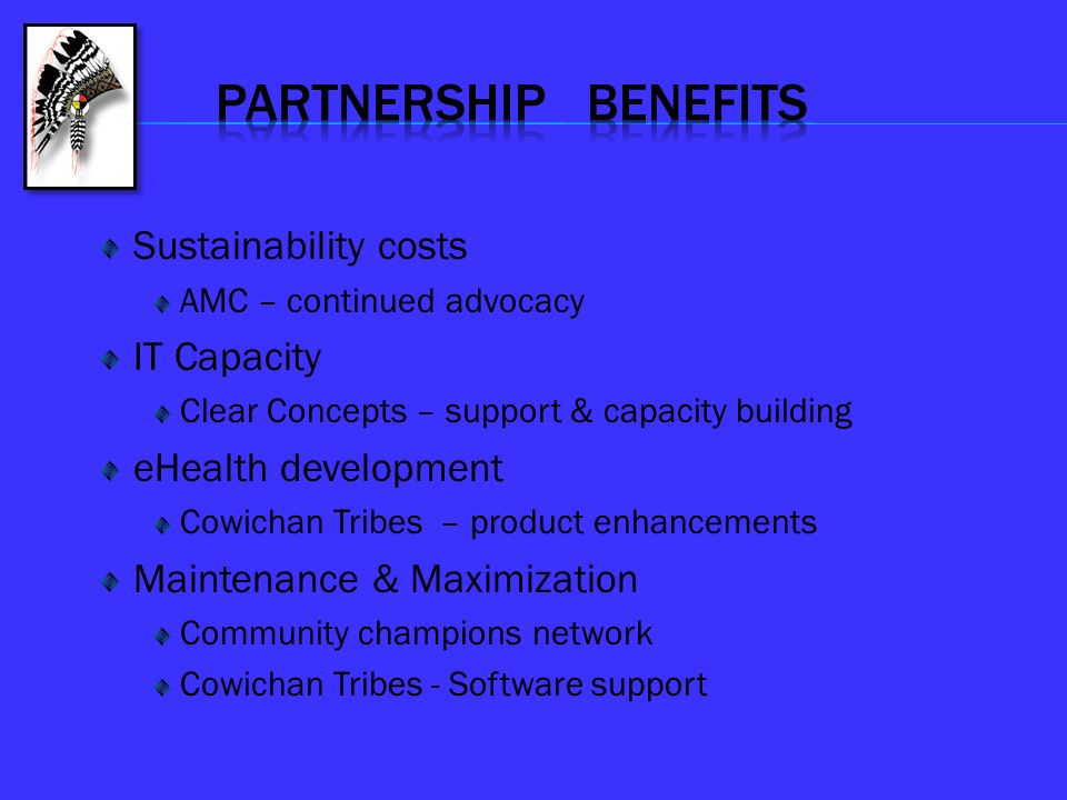 PARTNERSHIP BENEFITS Sustainability costs IT Capacity