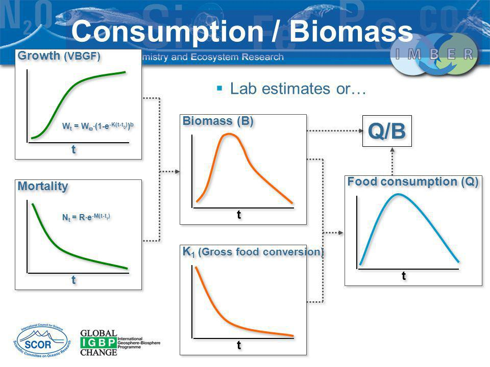 Consumption / Biomass Q/B Lab estimates or… Growth (VBGF) Biomass (B)