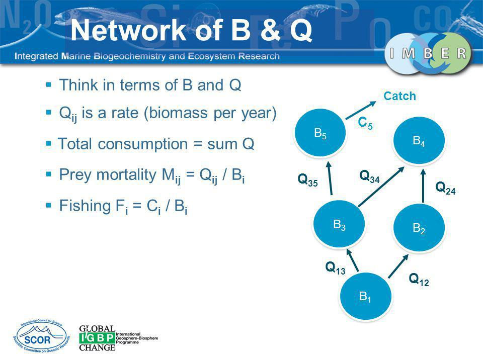 Network of B & Q Zi Think in terms of B and Q