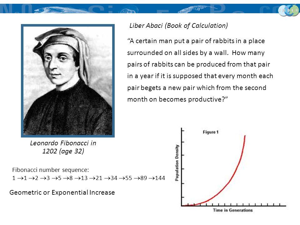 Leonardo Fibonacci in 1202 (age 32)