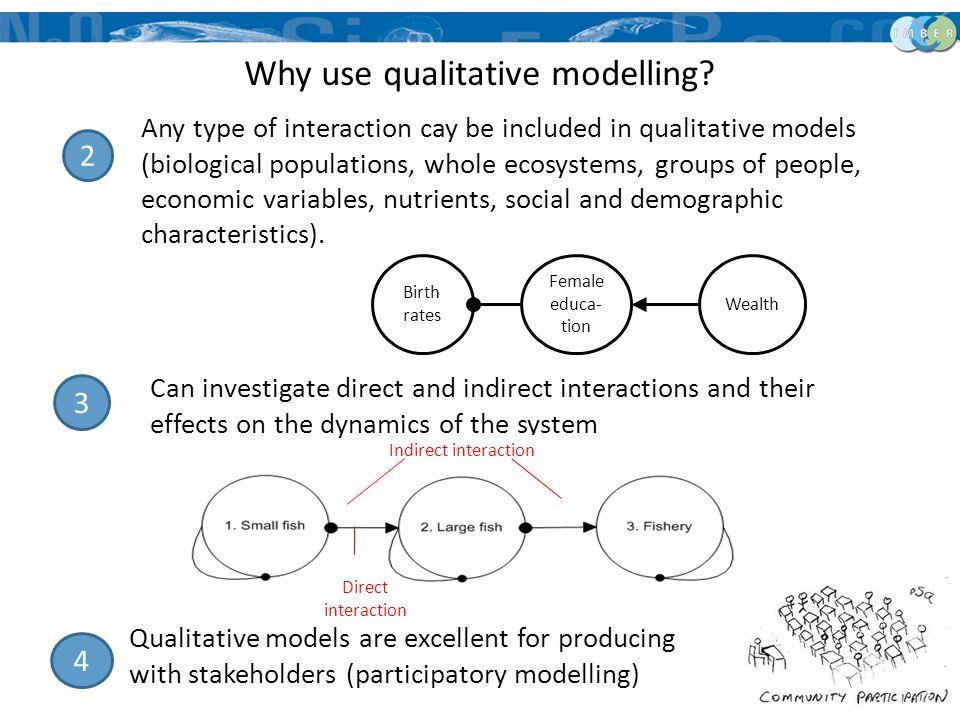 Why use qualitative modelling