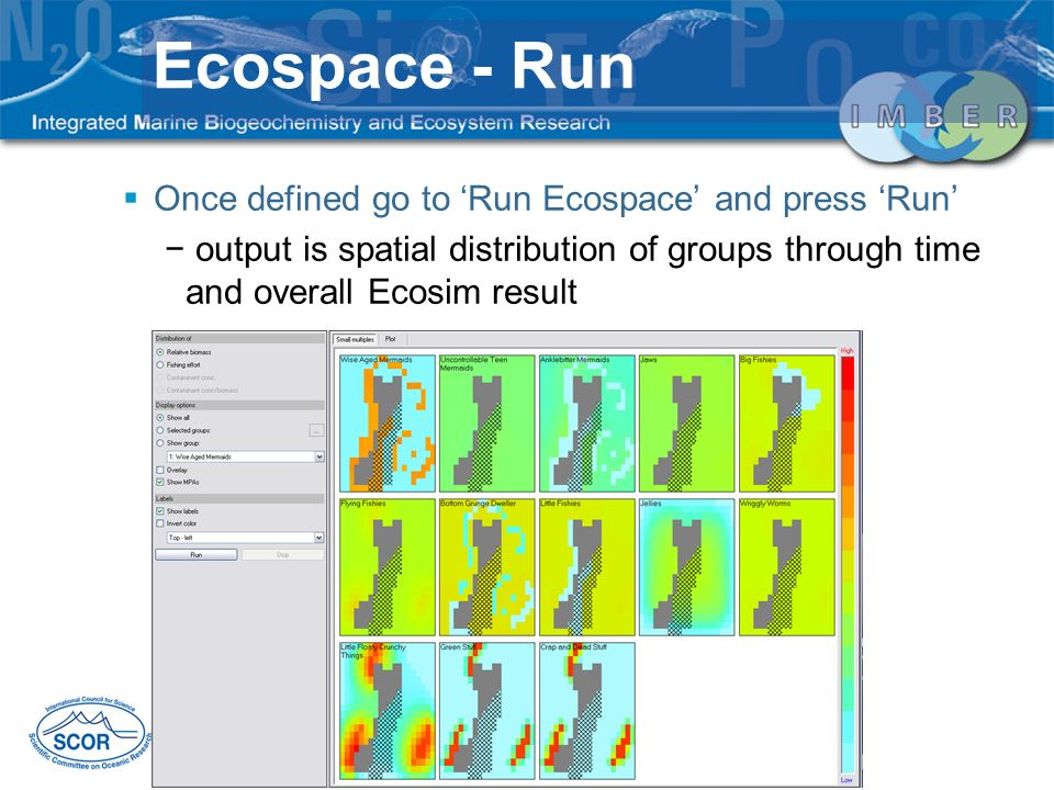 Ecospace - Run Once defined go to 'Run Ecospace' and press 'Run'