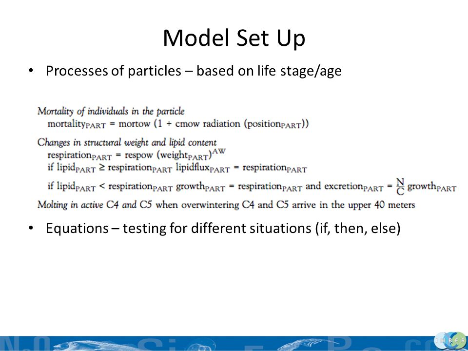 Model Set Up Processes of particles – based on life stage/age