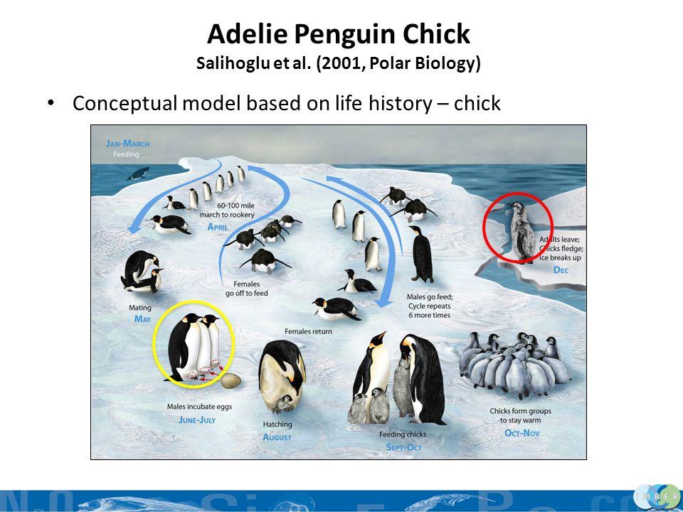Salihoglu et al. (2001, Polar Biology)