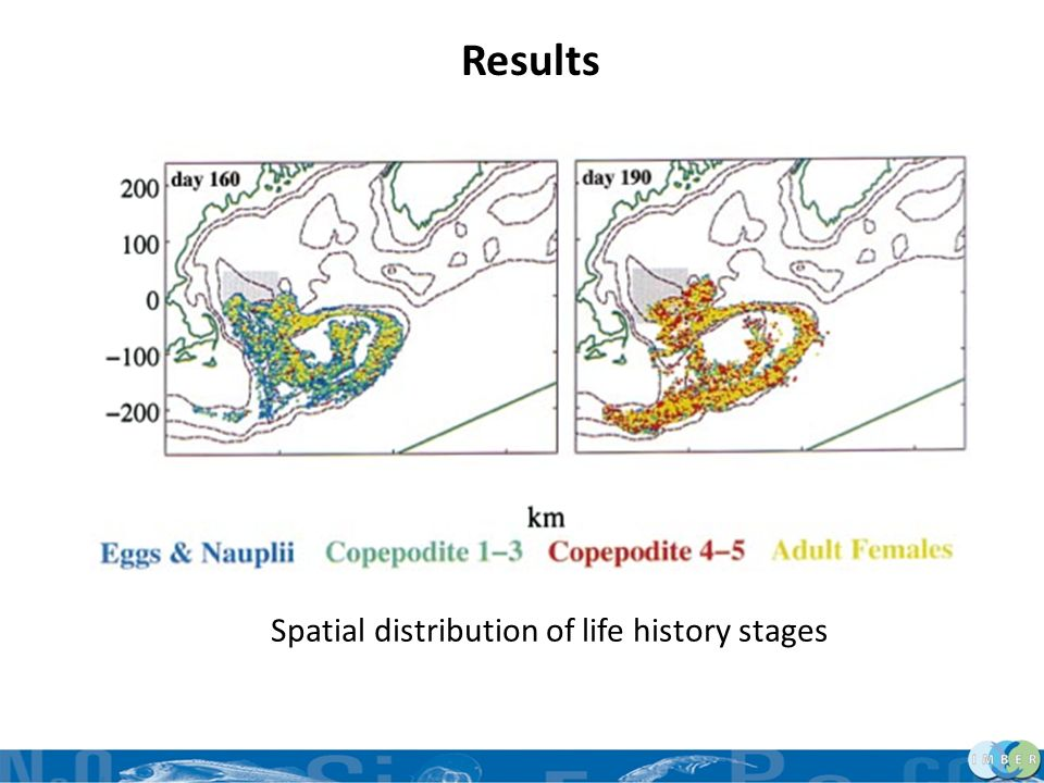 Results Spatial distribution of life history stages