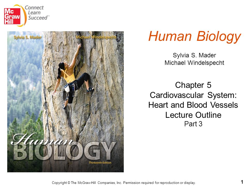 Human biology sylvia s mader michael windelspecht ppt video human biology sylvia s mader michael windelspecht fandeluxe Choice Image