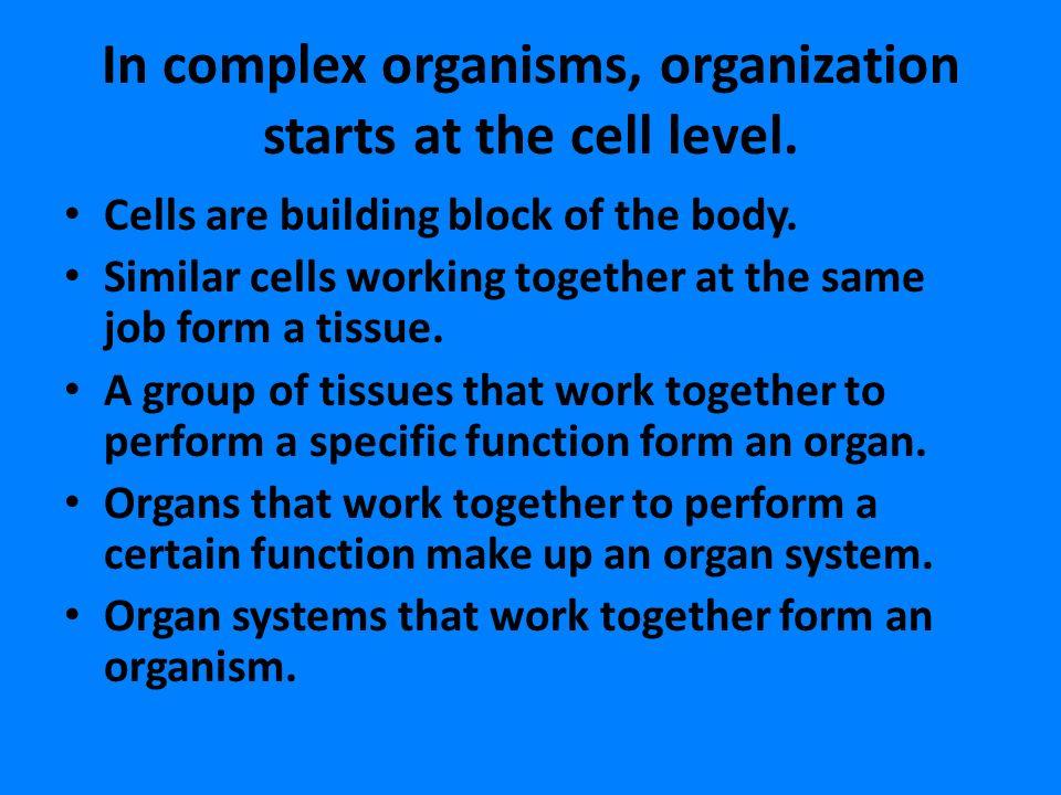 Cells. - ppt video online download