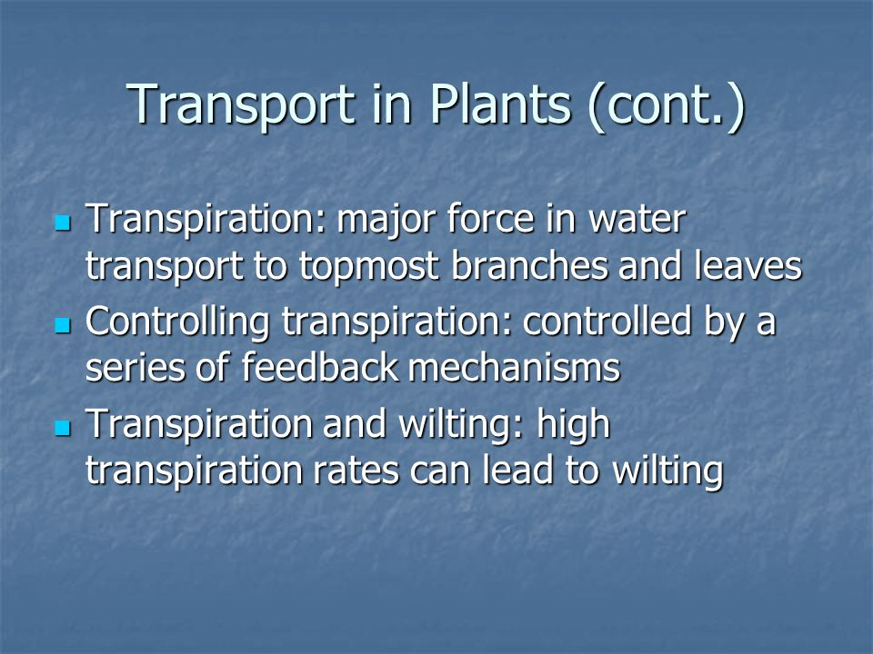 Transport in Plants (cont.)