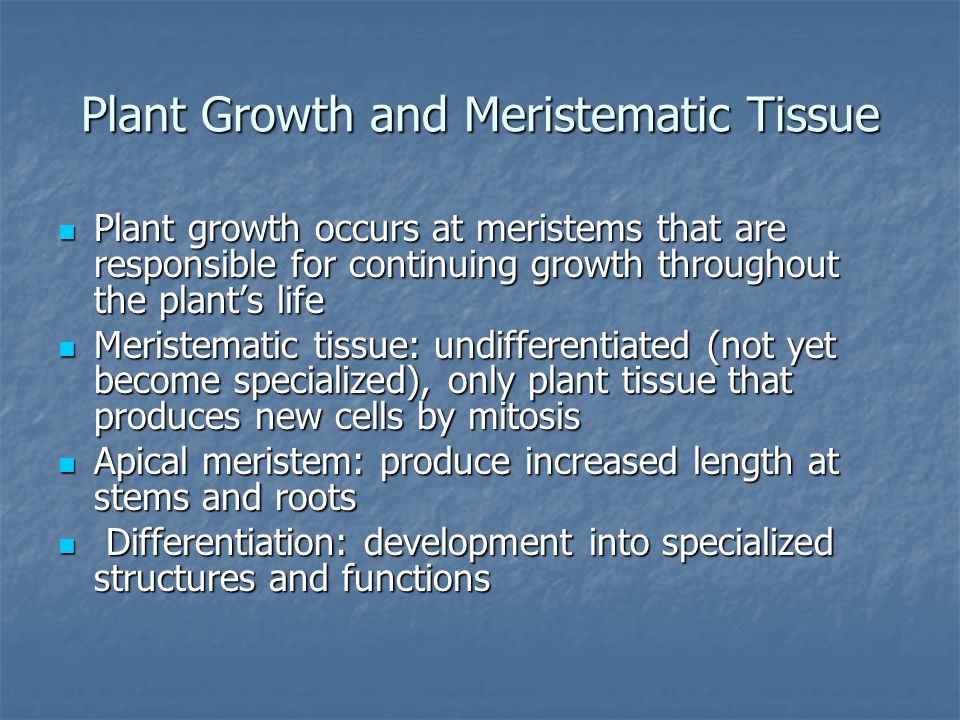 Plant Growth and Meristematic Tissue
