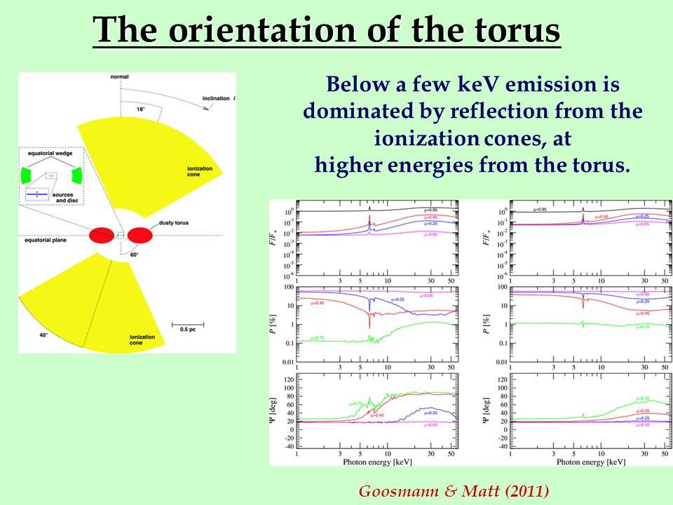 The orientation of the torus