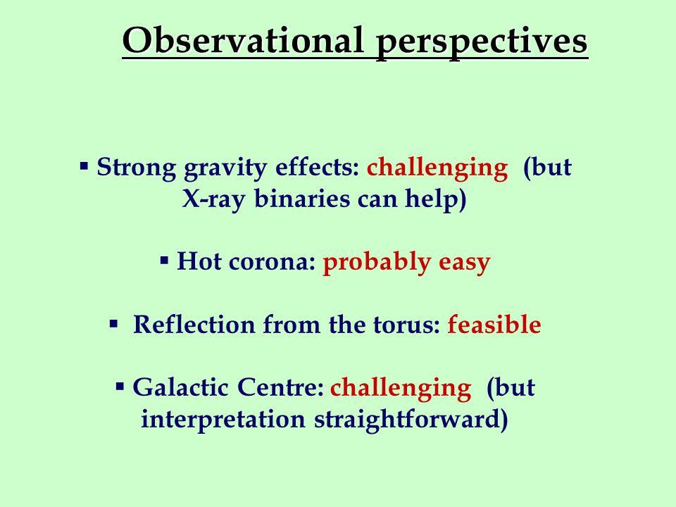 Observational perspectives