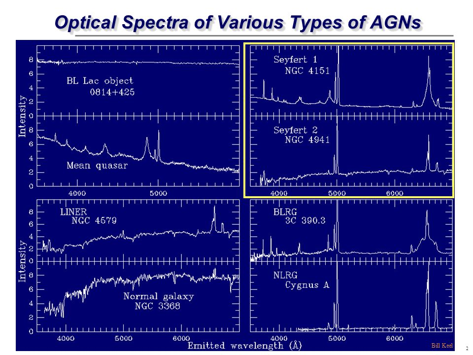Optical Spectra of Various Types of AGNs