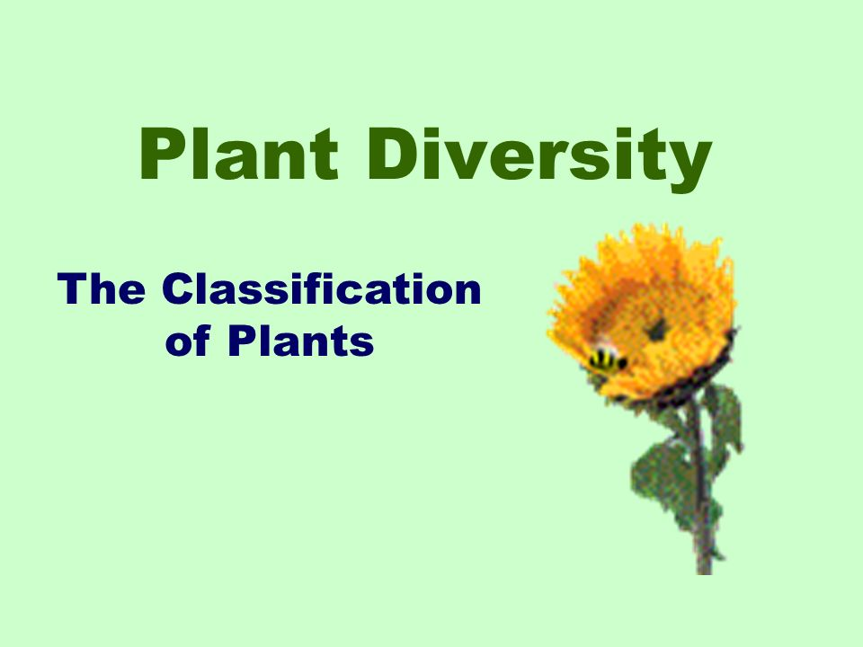 The Classification of Plants