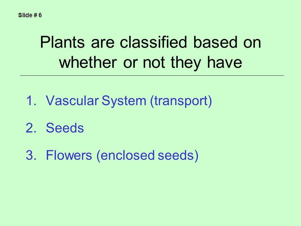 Plants are classified based on whether or not they have