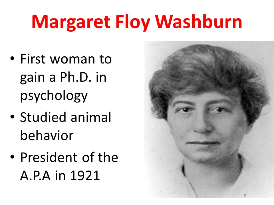 margaret floy washburn Margaret floy washburn (1871–1939) w b pillsbury miss washburn is typical of what is best in american psychology her activity covered the span of the truly modern movement.