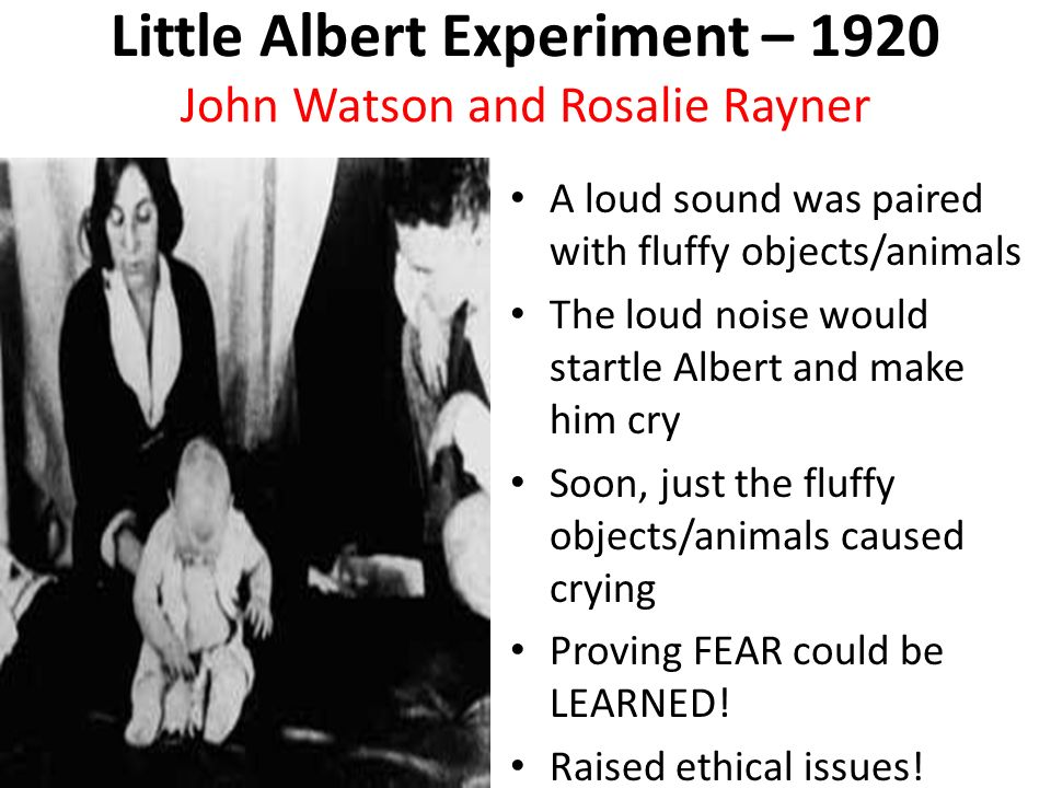 ethical concerns of the little albert study The little albert study has long been albert' ill during the famed conditioning study march led us to consider basic issues of experimental ethics, he.