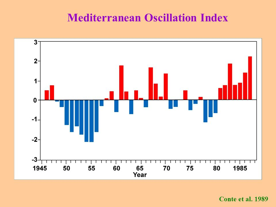 Mediterranean Oscillation Index