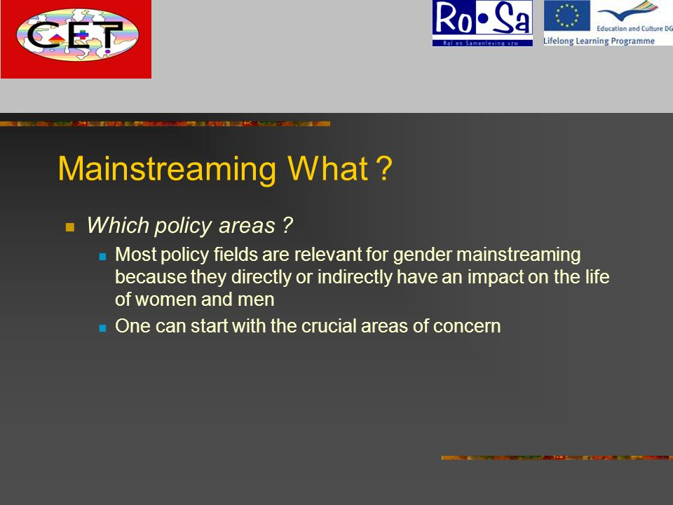 Mainstreaming What G Which policy areas