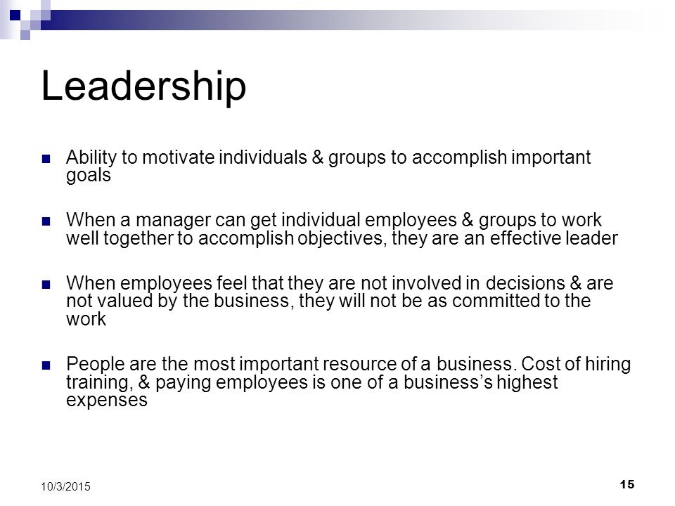 Leadership Ability to motivate individuals & groups to accomplish important goals.