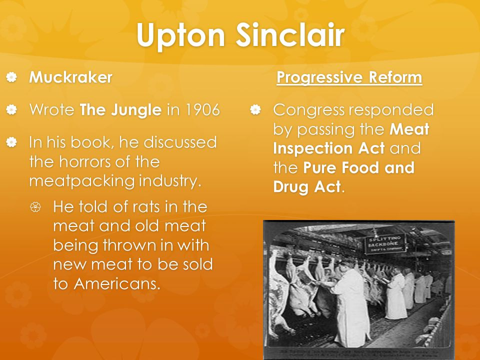 the roots of corruption in the jungle by upton sinclair The jungle is a 1906 novel written by the american journalist and novelist upton sinclair (1878-1968) sinclair wrote the novel to portray the lives of immigrants in the united states many readers were most concerned with his exposure of practices in the american meatpacking industry during the early 20th century, based on an investigation he.