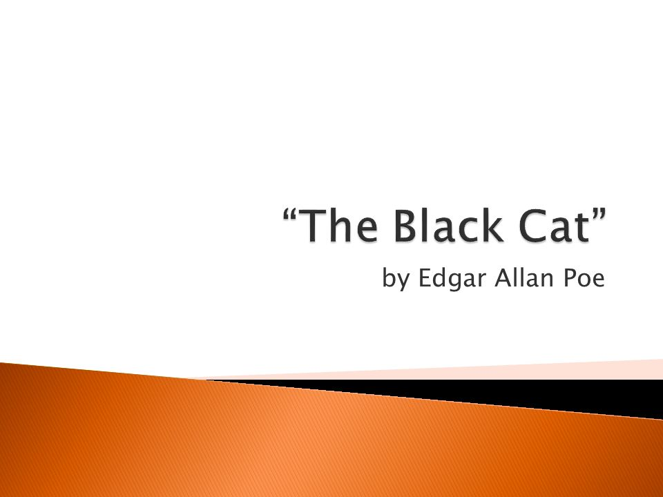 the importance of irony in edgar allan poes the black cat Edgar allan poe biography the black cat questions and answers the question and answer section for the black cat is a great resource to ask questions, find answers, and discuss the novel.