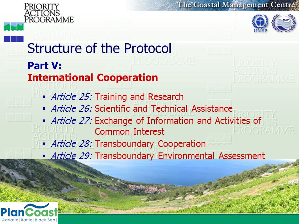 Structure of the Protocol