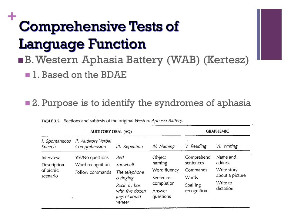 western aphasia battery test manual
