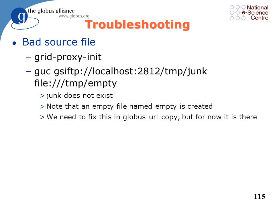 Troubleshooting Bad source file grid-proxy-init
