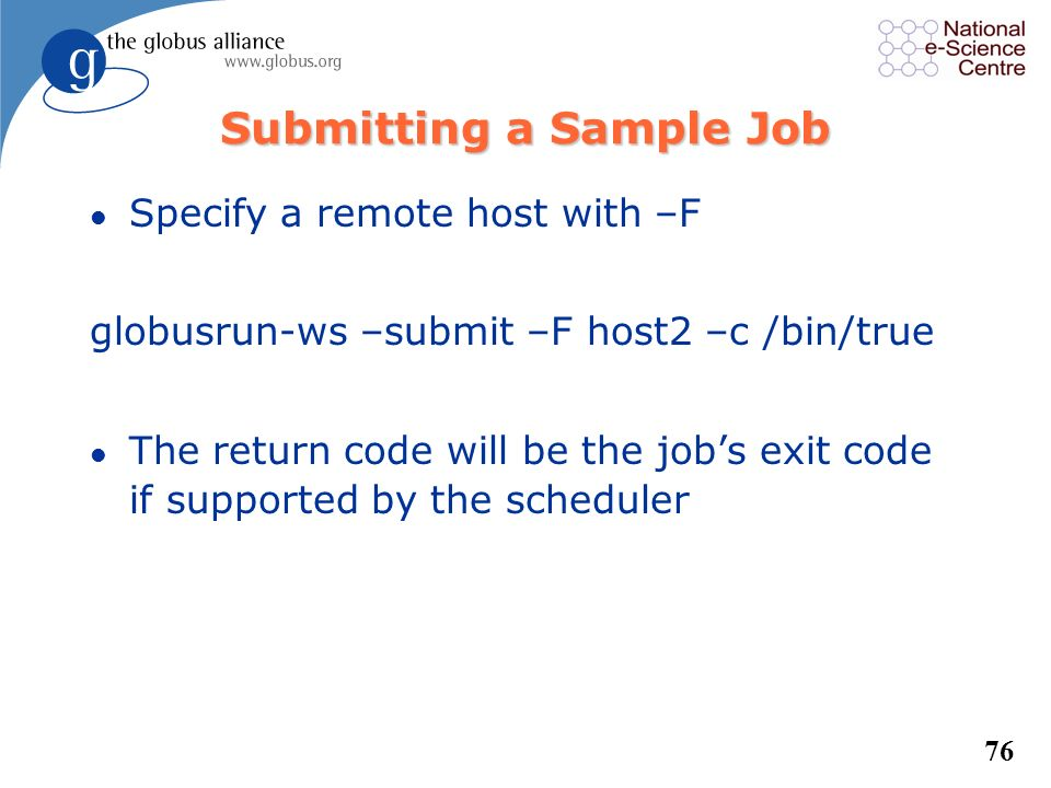 Submitting a Sample Job