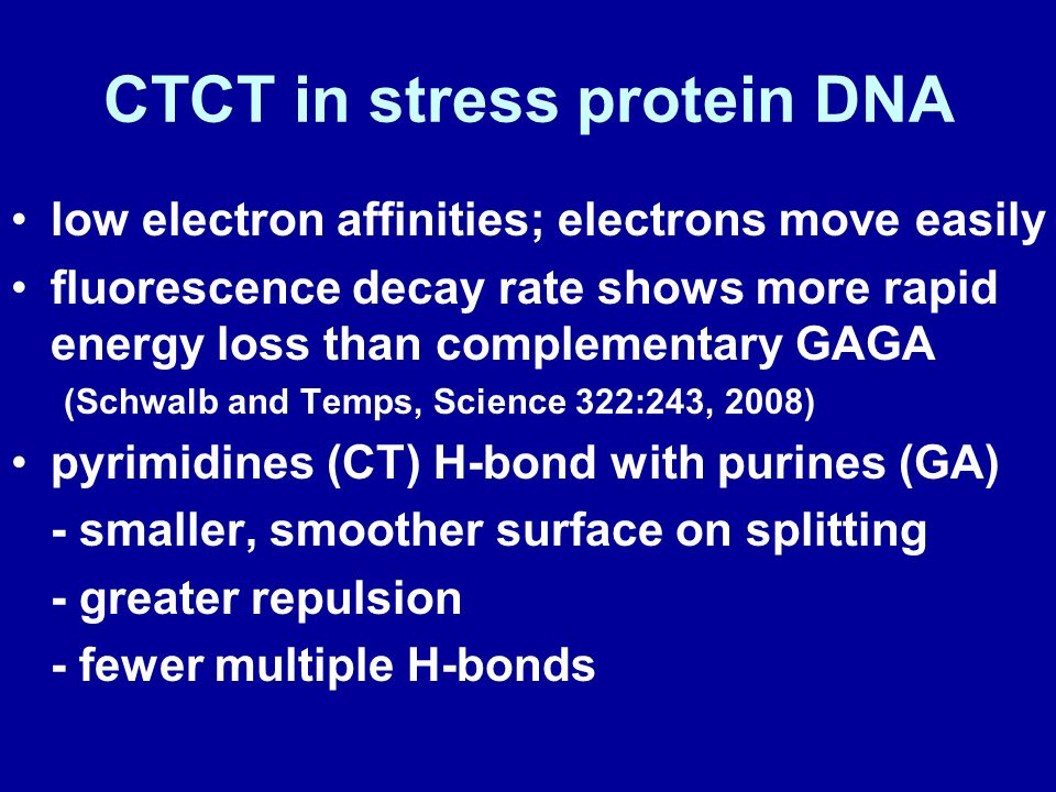 CTCT in stress protein DNA