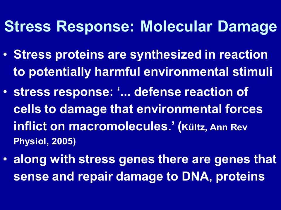 Stress Response: Molecular Damage