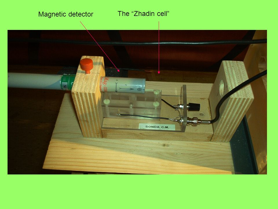 Magnetic detector The Zhadin cell