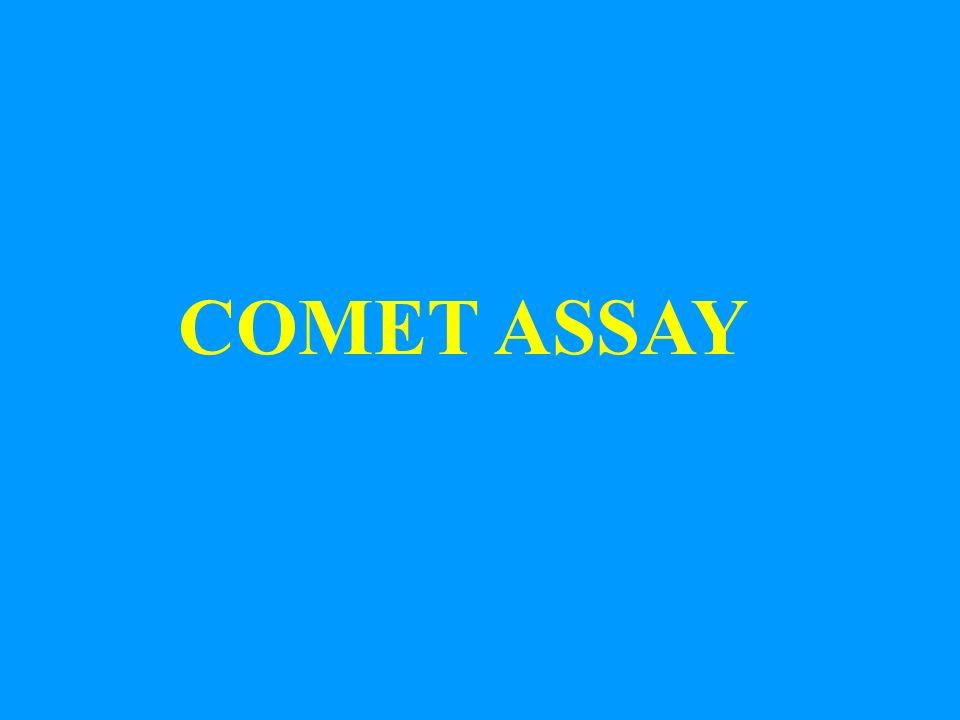 COMET ASSAY