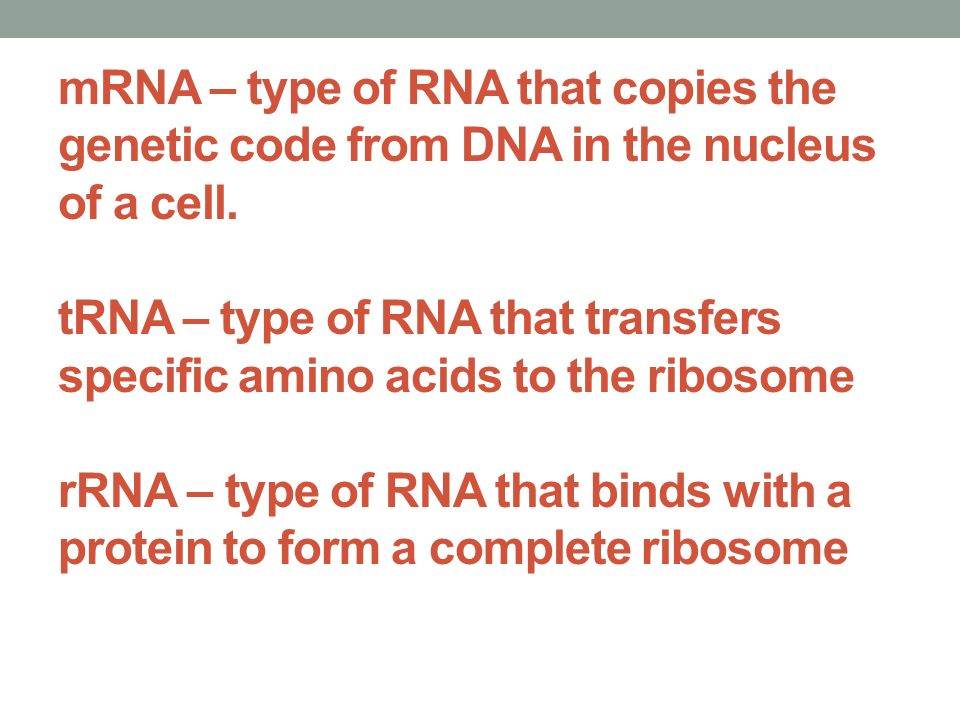 mRNA – type of RNA that copies the genetic code from DNA in the nucleus of a cell.
