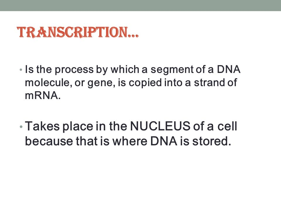 Transcription... Is the process by which a segment of a DNA molecule, or gene, is copied into a strand of mRNA.