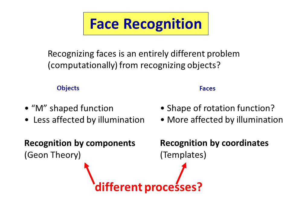 comparing and contrasting theories of object recognition Why the brain separates face recognition from object recognition joel z leibo, jim mutch and tomaso poggio department of brain and cognitive sciences.