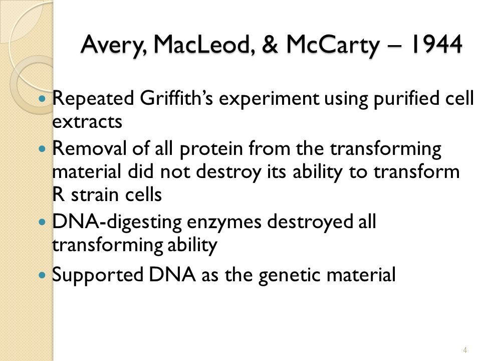 avery macleod mccarty experiment pdf