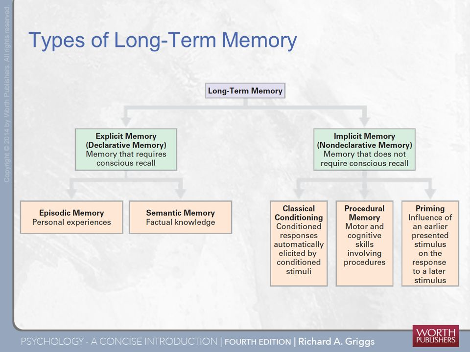 an overview of the different types of long term memory Explicit and implicit memory by richard h hall, 1998 overview among these is the differentiation of different types of long term (implicit memory).