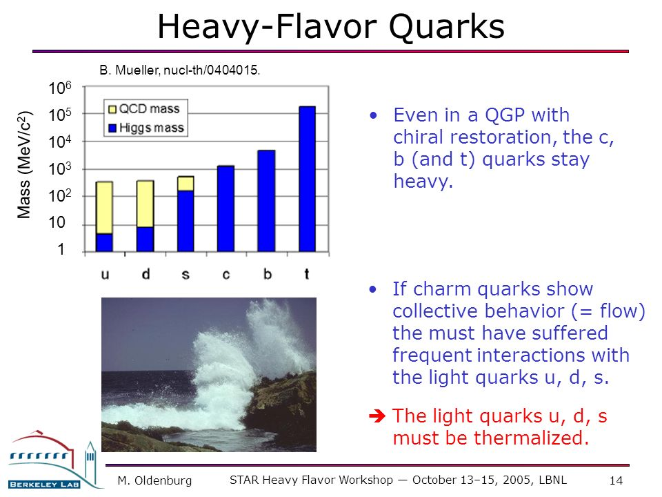 STAR Heavy Flavor Workshop — October 13–15, 2005, LBNL